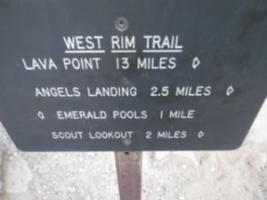 2.5 miles to Angel's Landing. Sounds short...