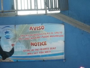 This sign made me laugh. Spanish: The sea lion jumps could wet the people in the front row. English: Siting (sic) in the fronts (sic) seat will get you wet! I like that the Spanish one explains the English one. :)