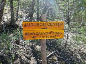 I did the bear canyon trail; it wasn't much of a distance!