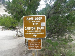 I suggest doing the canyon trail, then returning to the parking lot by the cave loop.