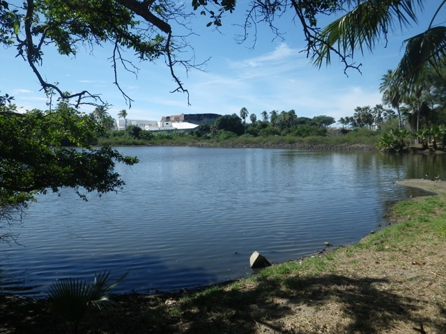 The lagoon at the Isla de la Piedra botanical gardens.