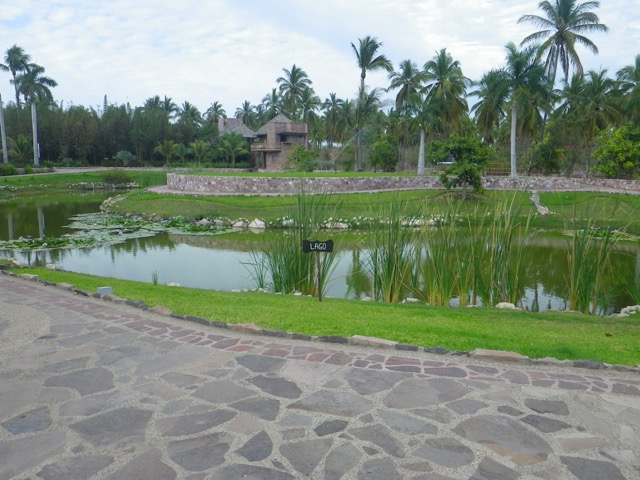 The lake at the heart of Isla de la Piedra's botanical gardens.