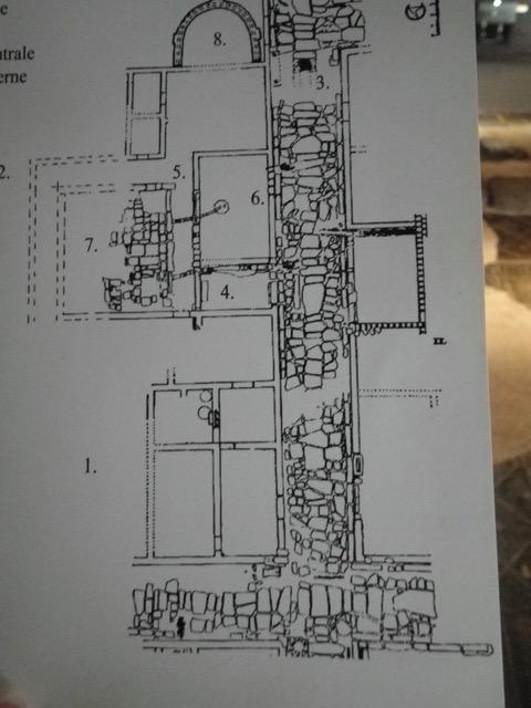 IMGP5387